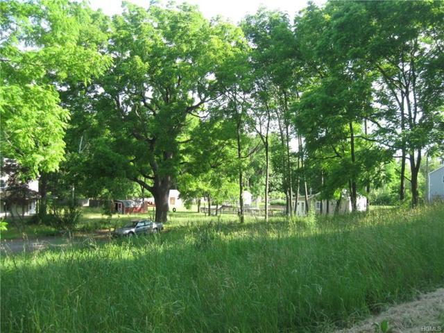 982 Lakes Road, Monroe, NY 10950 (MLS #4829114) :: William Raveis Baer & McIntosh