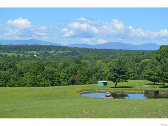 0 County Route 10, Hudson, NY 12523 (MLS #4829608) :: Mark Seiden Real Estate Team