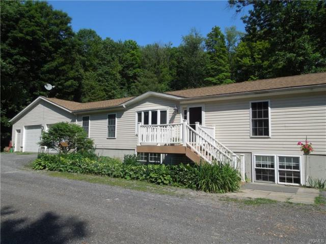 393 Maple Drive, Canaan, NY 12060 (MLS #4829942) :: William Raveis Legends Realty Group