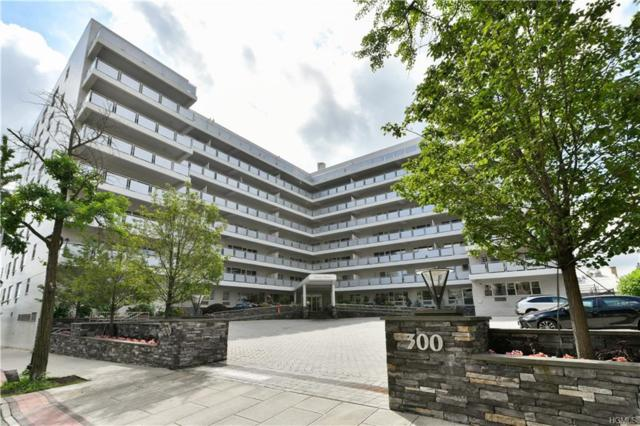 300 Martine Avenue 4D, White Plains, NY 10601 (MLS #4830973) :: Mark Boyland Real Estate Team