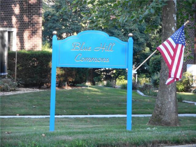 12 Blue Hill Commons Drive K, Orangeburg, NY 10962 (MLS #4831045) :: William Raveis Baer & McIntosh