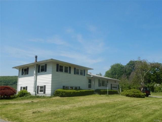 271 Vineyard Avenue, Highland, NY 12528 (MLS #4831065) :: Mark Seiden Real Estate Team
