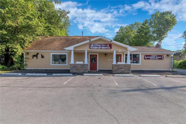 573 State Route 17M, Monroe, NY 10950 (MLS #4831070) :: Mark Seiden Real Estate Team