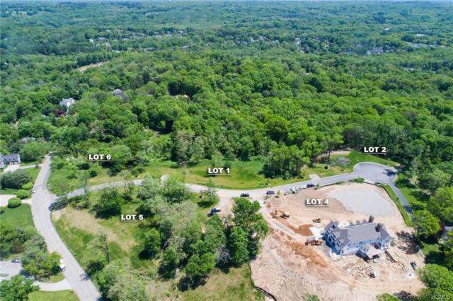 6 Deer Ridge Lane, Armonk, NY 10504 (MLS #4831166) :: William Raveis Baer & McIntosh