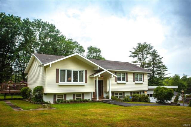 15 Black Brook Drive, Forestburgh, NY 12777 (MLS #4831549) :: Mark Boyland Real Estate Team