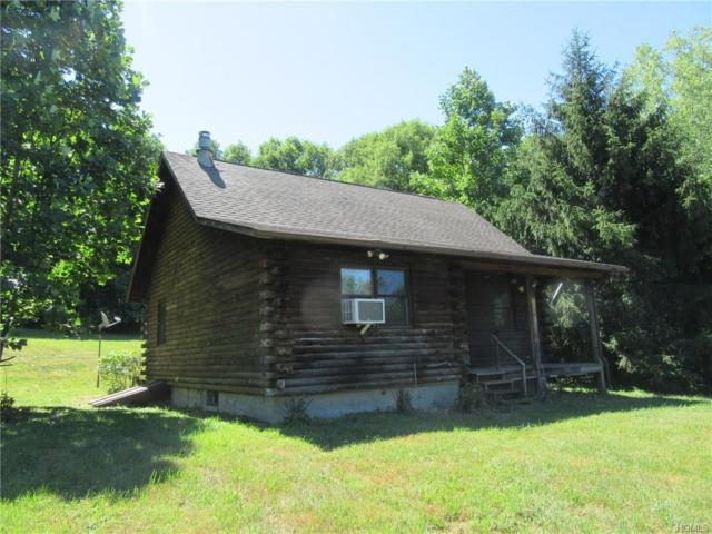 922 Duell Road, Stanfordville, NY 12581 (MLS #4831599) :: William Raveis Legends Realty Group
