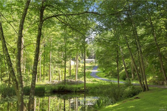 205 Hardscrabble Road, North Salem, NY 10560 (MLS #4831823) :: Mark Boyland Real Estate Team