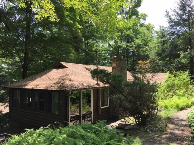 52 Cumberland Trail, Smallwood, NY 12778 (MLS #4831951) :: Stevens Realty Group