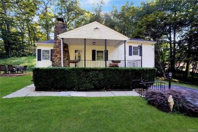 74 Warren Drive, Patterson, NY 12563 (MLS #4832084) :: Mark Seiden Real Estate Team