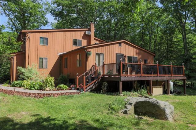 459 Richardsville Road, Carmel, NY 10512 (MLS #4832093) :: Mark Seiden Real Estate Team