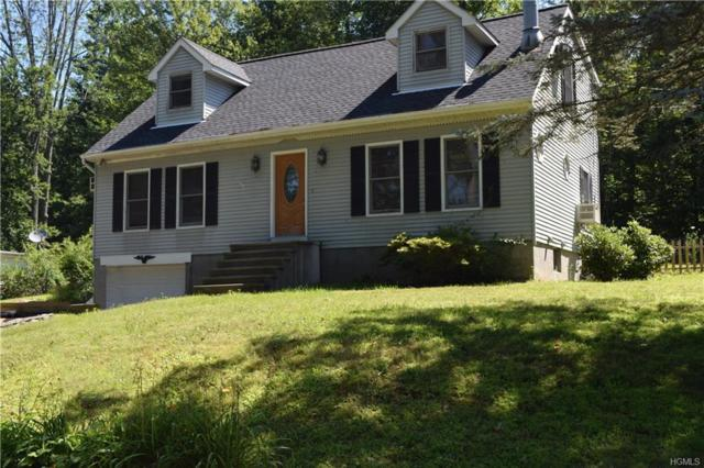 35 Barnard Road, Patterson, NY 12563 (MLS #4832180) :: Mark Seiden Real Estate Team