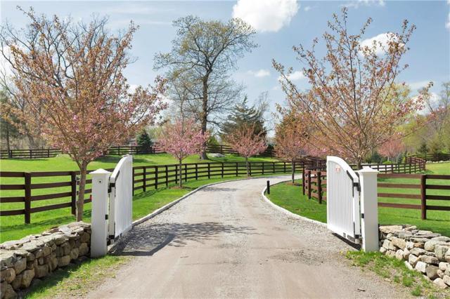 18 Schoolhouse Road, Pound Ridge, NY 10576 (MLS #4832372) :: Mark Boyland Real Estate Team