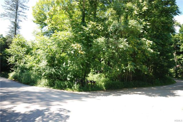 20 Lake Surprise Road, Cold Spring, NY 10516 (MLS #4832552) :: Mark Seiden Real Estate Team