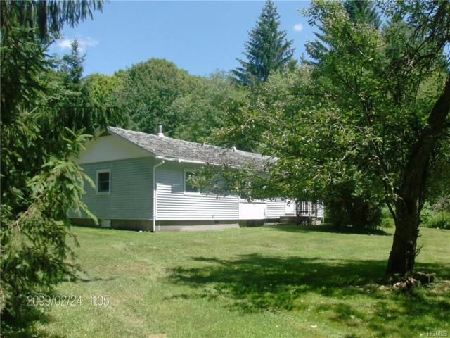 121 Jug Tavern Road, Downsville, NY 13755 (MLS #4832671) :: Mark Boyland Real Estate Team