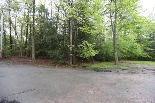1252 Forestburgh Road, Glen Spey, NY 12737 (MLS #4832842) :: Mark Seiden Real Estate Team