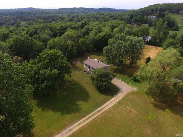 9 Ferrara Drive, Rhinebeck, NY 12572 (MLS #4832945) :: Mark Boyland Real Estate Team