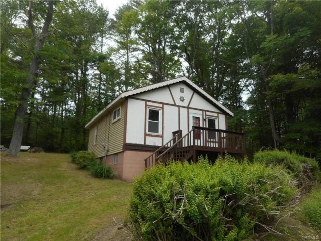 927 State Route 42, Sparrowbush, NY 12780 (MLS #4833066) :: Mark Seiden Real Estate Team