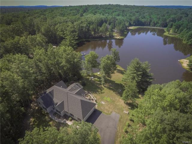 17 Gabby Lane, Pine Bush, NY 12566 (MLS #4833096) :: Mark Seiden Real Estate Team