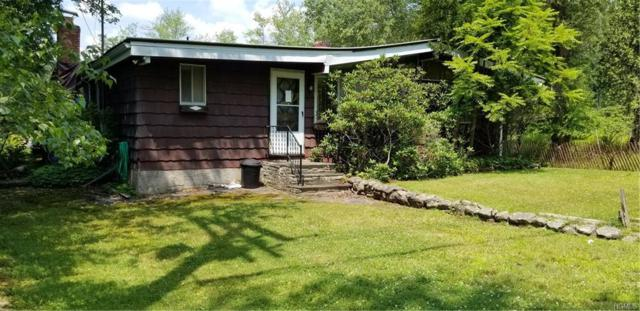 4096 W Shore Drive, Kauneonga Lake, NY 12749 (MLS #4833104) :: Stevens Realty Group