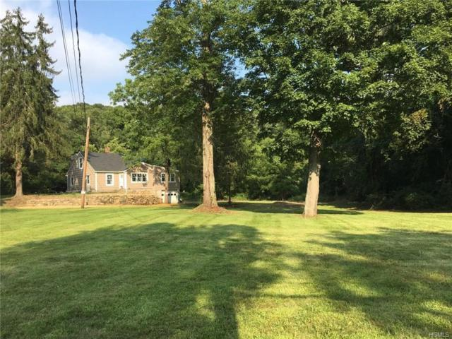 100 Teakettle Spout Road, Mahopac, NY 10541 (MLS #4833117) :: William Raveis Baer & McIntosh