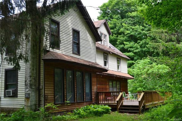 715 Cooks Falls, Roscoe, NY 12776 (MLS #4833129) :: Shares of New York
