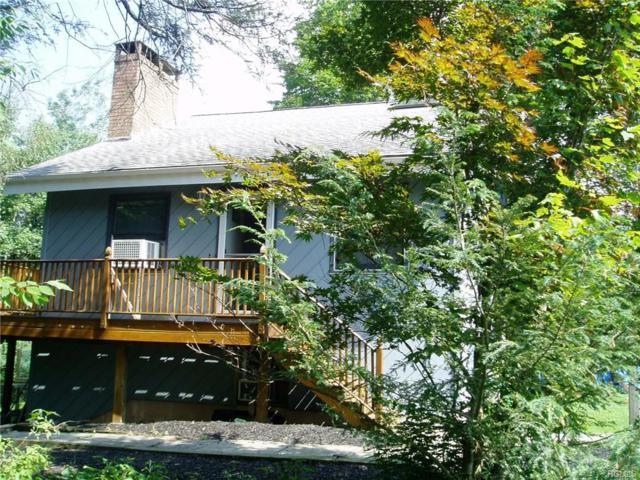 19 Morris Drive, Loch Sheldrake, NY 12759 (MLS #4833130) :: Mark Seiden Real Estate Team