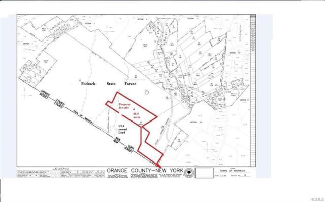 County Hwy 88, Pine Island, NY 10969 (MLS #4833133) :: Michael Edmond Team at Keller Williams NY Realty