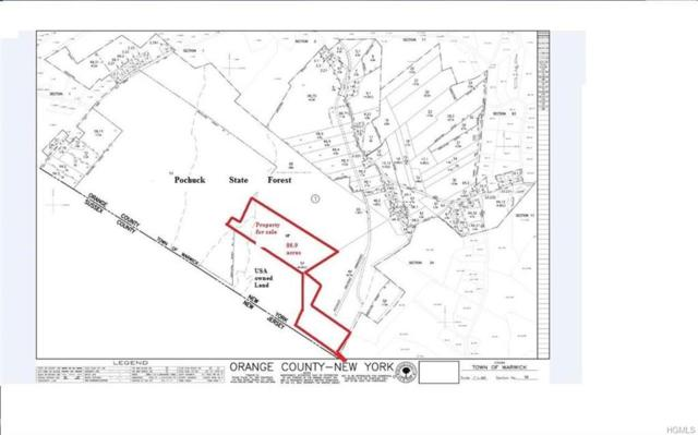 County Hwy 88, Warwick Town, NY 10969 (MLS #H4833133) :: Cronin & Company Real Estate