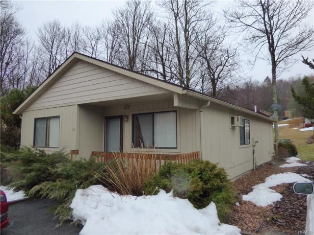 82 Timber Hill Lane, South Fallsburg, NY 12779 (MLS #4833235) :: Mark Seiden Real Estate Team