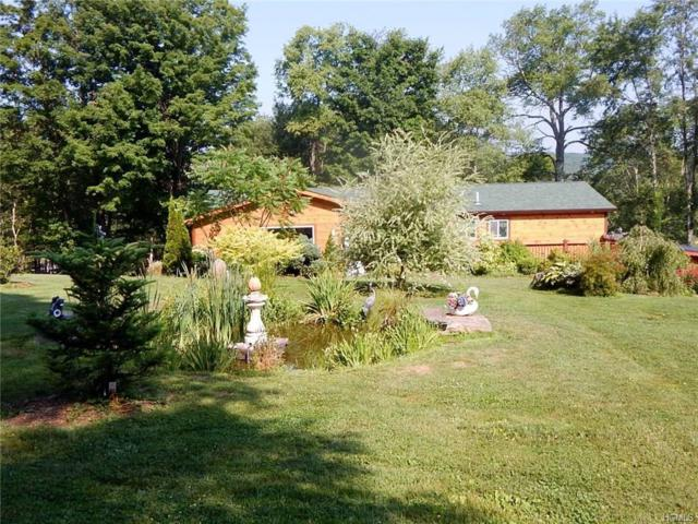 143 S Maplewood Road, Monticello, NY 12701 (MLS #4833267) :: Mark Seiden Real Estate Team
