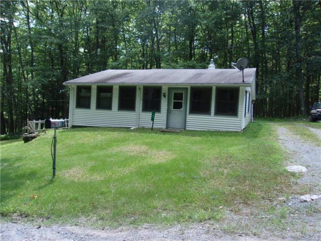 45 Hoyt Road, Glen Spey, NY 12737 (MLS #4833297) :: Mark Seiden Real Estate Team