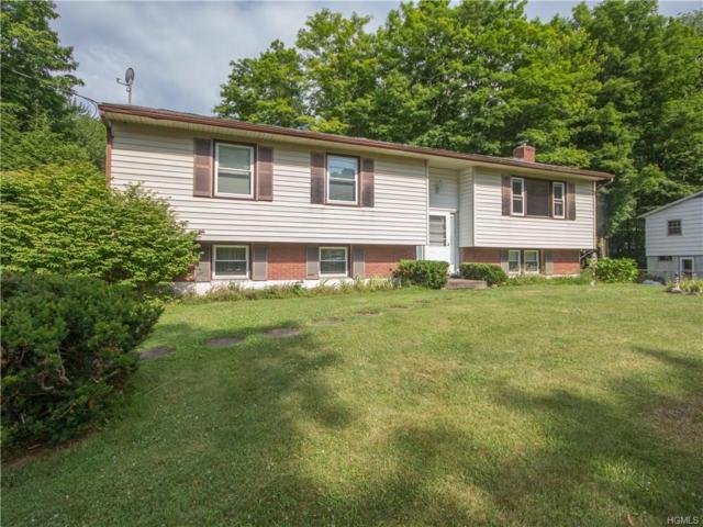 11 Forest Road, Woodbourne, NY 12788 (MLS #4833323) :: Mark Seiden Real Estate Team