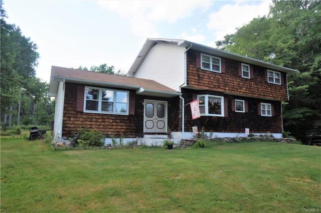 384 Big Hollow Road, Grahamsville, NY 12740 (MLS #4833355) :: Michael Edmond Team at Keller Williams NY Realty