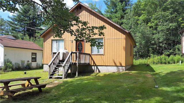 96 Zimmerman Road, Loch Sheldrake, NY 12759 (MLS #4833526) :: Mark Seiden Real Estate Team