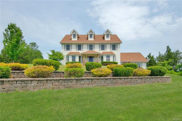 61 Nancy Lane, Chester, NY 10918 (MLS #4833572) :: Mark Seiden Real Estate Team