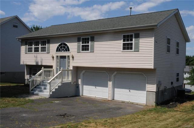33 Wavey Willow Lane, Montgomery, NY 12549 (MLS #4833587) :: William Raveis Baer & McIntosh