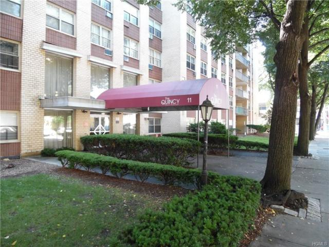11 Park Avenue 4W, Mount Vernon, NY 10550 (MLS #4833620) :: Mark Boyland Real Estate Team