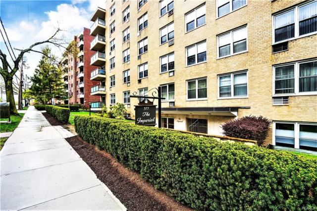 377 Westchester Avenue Lj, Port Chester, NY 10573 (MLS #4833650) :: William Raveis Legends Realty Group