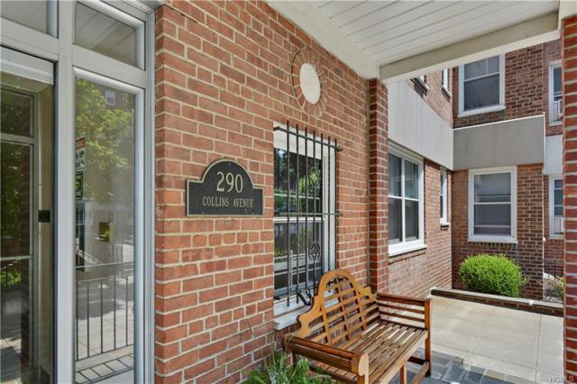 290 Collins Avenue 3A, Mount Vernon, NY 10552 (MLS #4833683) :: William Raveis Baer & McIntosh