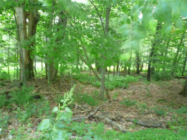 Back Shandelee Road, Livingston Manor, NY 12758 (MLS #4833722) :: Mark Seiden Real Estate Team