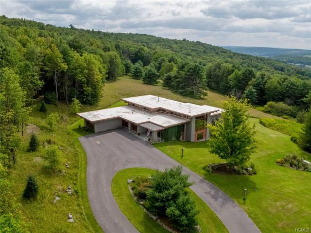 118 Sweet Hill Road, Other, NY 13807 (MLS #4833771) :: Mark Seiden Real Estate Team