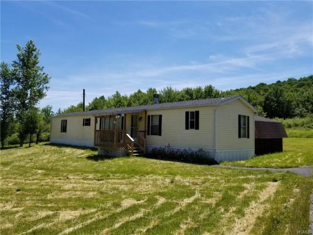 9 T. Robertson Road, Livingston Manor, NY 12758 (MLS #4833790) :: Michael Edmond Team at Keller Williams NY Realty