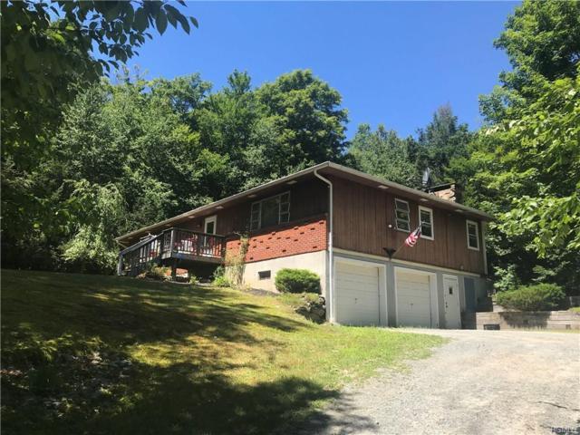 481 Hasbrouck A Road, Hurleyville, NY 12747 (MLS #4834017) :: Mark Seiden Real Estate Team