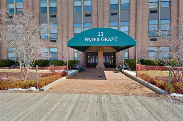 23 Water Grant Street 10N, Yonkers, NY 10701 (MLS #4834084) :: Michael Edmond Team at Keller Williams NY Realty