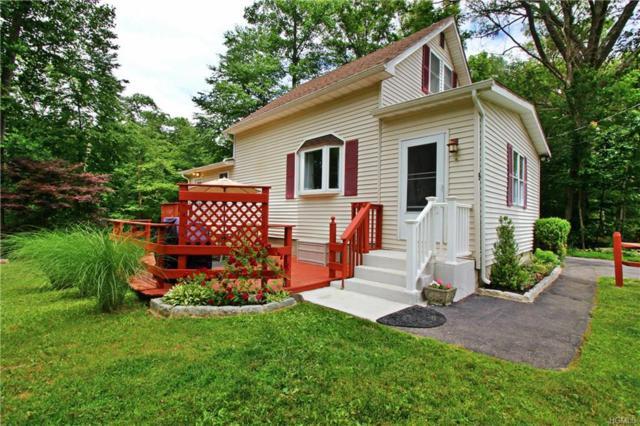 9 Java Road, Patterson, NY 12563 (MLS #4834122) :: Mark Seiden Real Estate Team