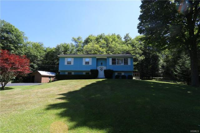 409 Debruce Road, Livingston Manor, NY 12758 (MLS #4834147) :: Mark Seiden Real Estate Team