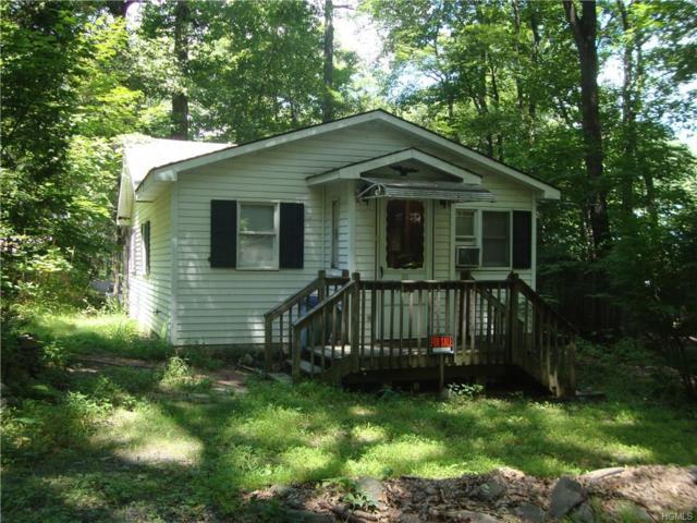 11 Cascade Trail, Monroe, NY 10950 (MLS #4834206) :: Mark Seiden Real Estate Team