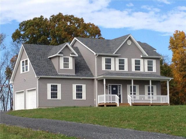 56 Noelle Drive, Walden, NY 12586 (MLS #4834223) :: Mark Seiden Real Estate Team