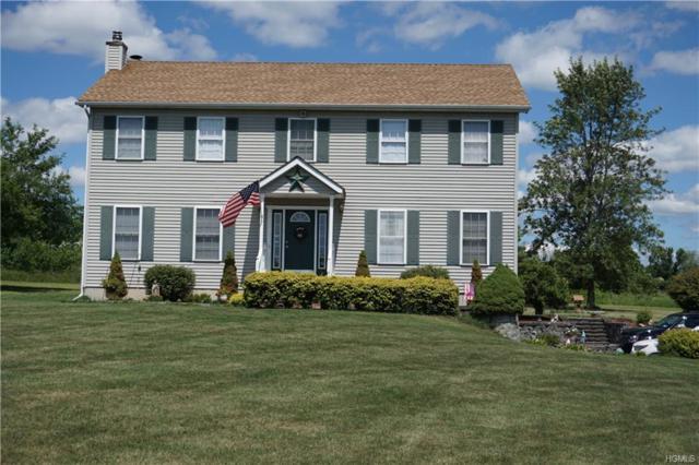 78 River Glen Road, Wallkill, NY 12589 (MLS #4834286) :: Mark Seiden Real Estate Team