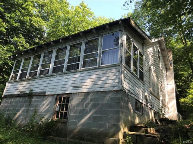 17 S Shore Drive, Middletown, NY 10940 (MLS #4834296) :: Mark Seiden Real Estate Team